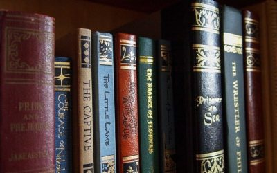 A Unique Hybrid Publisher, 3rd coast books LLC